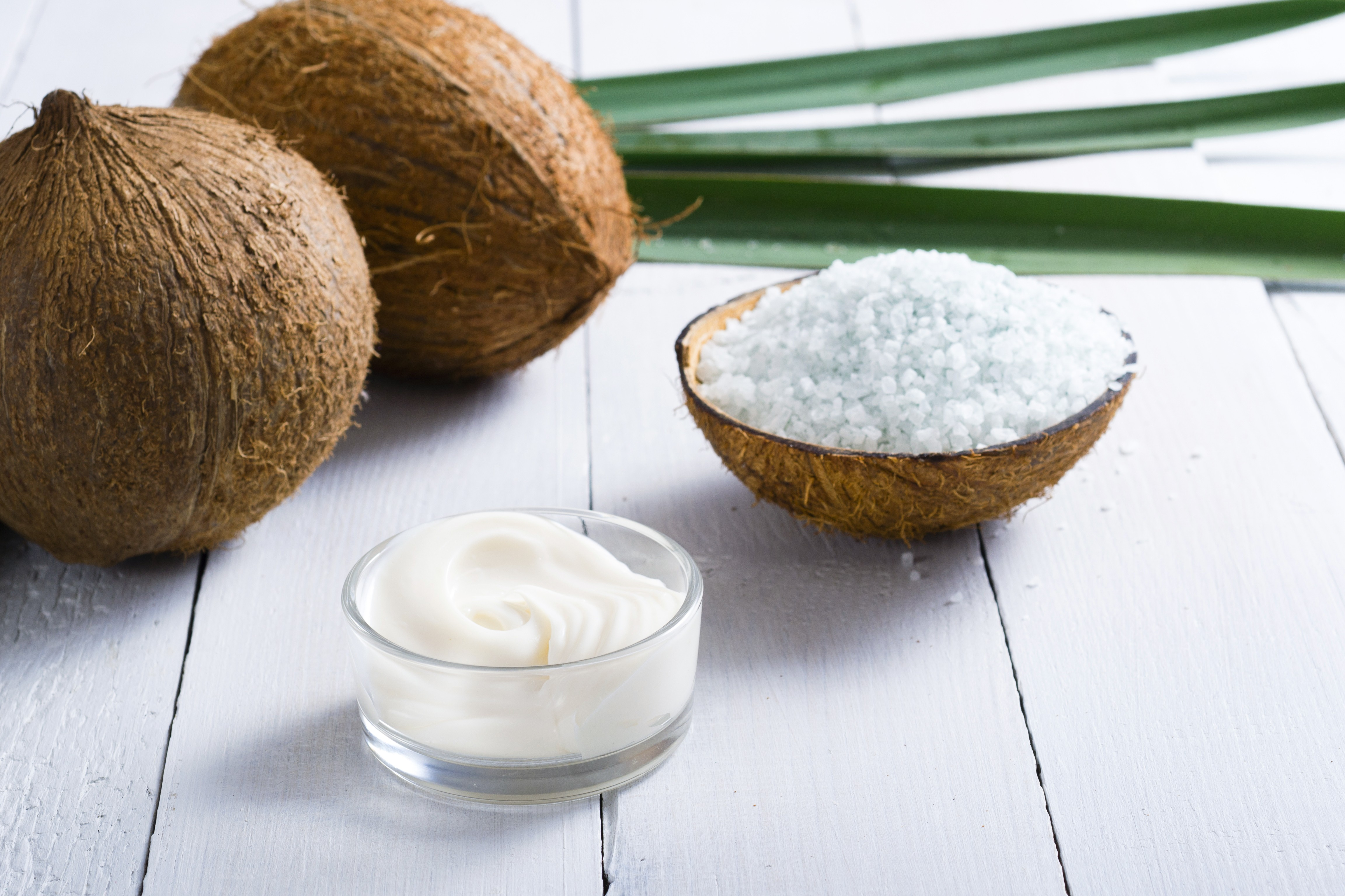 Ococonut-image-2